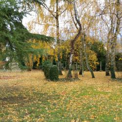 Terrain  de 810 m²  Houdan  (78550)