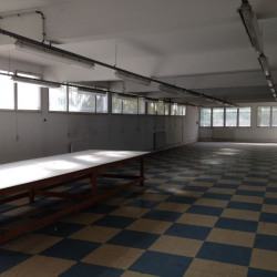 Vente Local d'activités Clamart 1605 m²