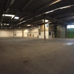Vente Local d'activités Torcy 1200 m²