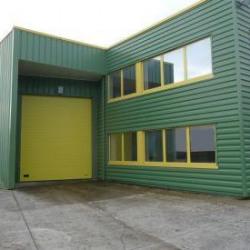Location Local d'activités Léognan 350 m²