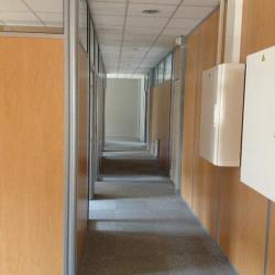 Location Bureau Cournon-d'Auvergne 317 m²