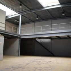 Location Local d'activités Gretz-Armainvilliers 430 m²