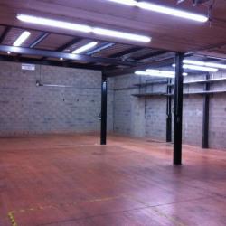 Vente Local d'activités Aulnay-sous-Bois 367 m²