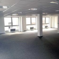 Location Bureau Lille 140 m²