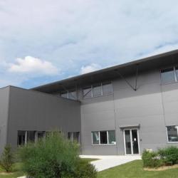 Vente Local d'activités Moirans 303 m²