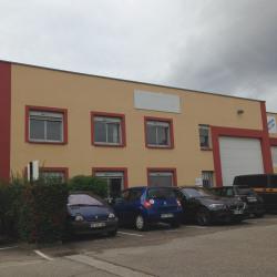 Location Local d'activités Lyon 7ème 431 m²