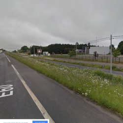 Vente Terrain Vigneux-de-Bretagne 40000 m²