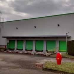 Location Local d'activités Genay 3880 m²