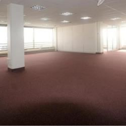 Location Bureau Rosny-sous-Bois 165 m²