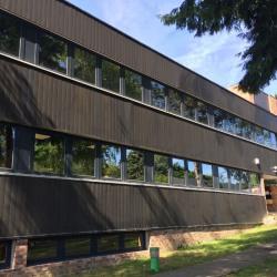 Location Bureau Verrières-le-Buisson 395 m²