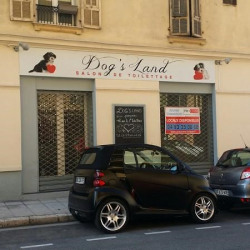 Location Local commercial Nice 38 m²
