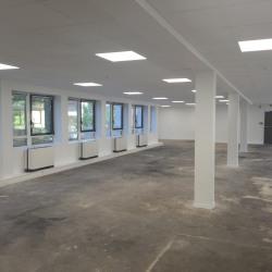 Location Bureau Issy-les-Moulineaux 591 m²
