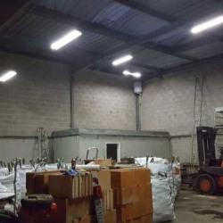 Location Entrepôt Les Mureaux 257 m²