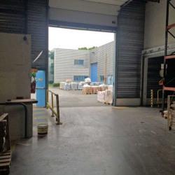 Location Local d'activités Taverny 6165 m²