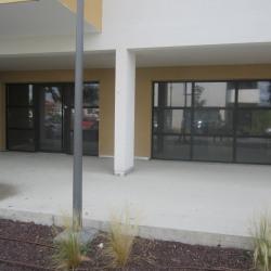 Vente Local commercial Quint-Fonsegrives 66 m²