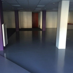 Location Local commercial Lille 291 m²