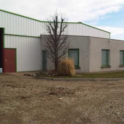 Location Local d'activités Saint-Laurent-de-Mure 500 m²