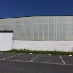 Location Local d'activités Wambrechies 493 m²
