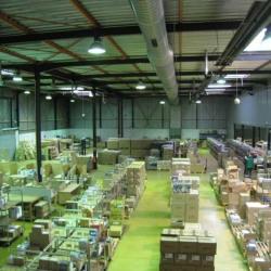 Location Entrepôt Toulouse 2900 m²