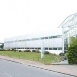 Location Bureau Bordeaux 287 m²