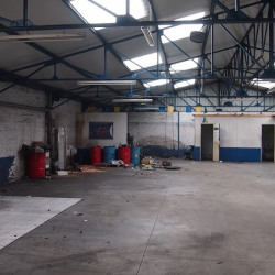 Location Local commercial Lille 523 m²