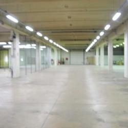 Location Local d'activités Rosny-sous-Bois 650 m²