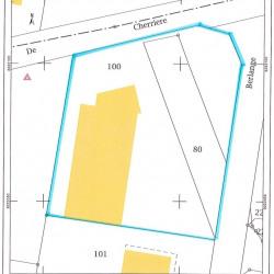 Vente Local d'activités Woippy 1150 m²