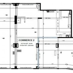 Location Local commercial Alfortville 216,9 m²