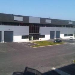 Location Local d'activités Saint-Denis 724 m²
