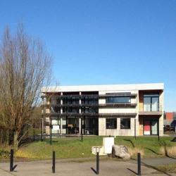 Location Bureau Villeneuve-d'Ascq 300 m²