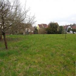 Vente Terrain Wissembourg 880 m²