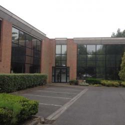 Location Bureau Wasquehal (59290)