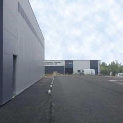 Location Entrepôt Ambarès-et-Lagrave 370 m²