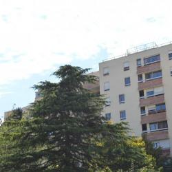 location Appartement 4 pièces Le Kremlin Bicetre