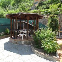 Maison individuelle avec terrasse et jardin
