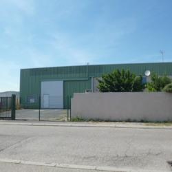 Location Local d'activités Narbonne 800 m²