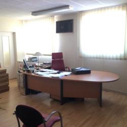 Location Local d'activités Toulouse 700 m²