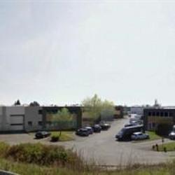 Location Local d'activités Sainte-Geneviève-des-Bois 1822 m²