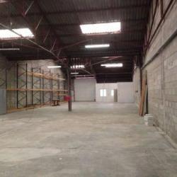 Vente Local d'activités Chevilly 480 m²