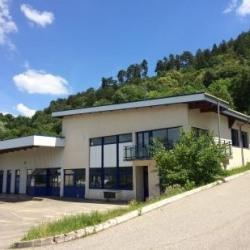 Location Local d'activités Annecy 1200 m²