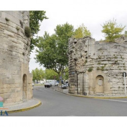 Vente Local commercial Arles 0 m²