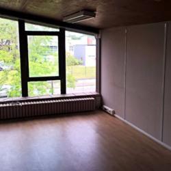 Location Local d'activités Toulouse 1000 m²
