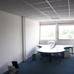 Vente Bureau Rosny-sous-Bois 344 m²
