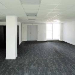 Location Bureau Lyon 3ème 130 m²