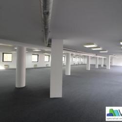 Vente Bureau Saint-Maurice 534 m²