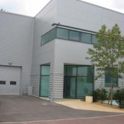 Location Local d'activités Ivry-sur-Seine 420 m²
