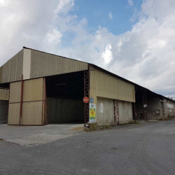 Location Local commercial Vernet (31810)