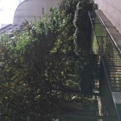 Location Bureau Paris 16ème 145 m²