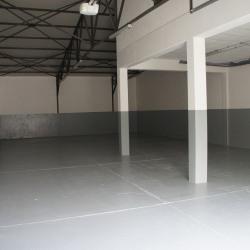 Location Local d'activités Champigny-sur-Marne 270 m²