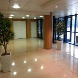 Location Bureau Noisy-le-Grand 145 m²